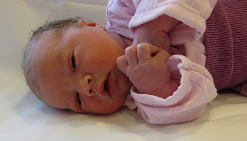 Lilly Hermes